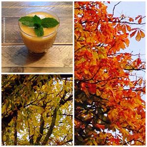 Zonnige herfst-smoothie