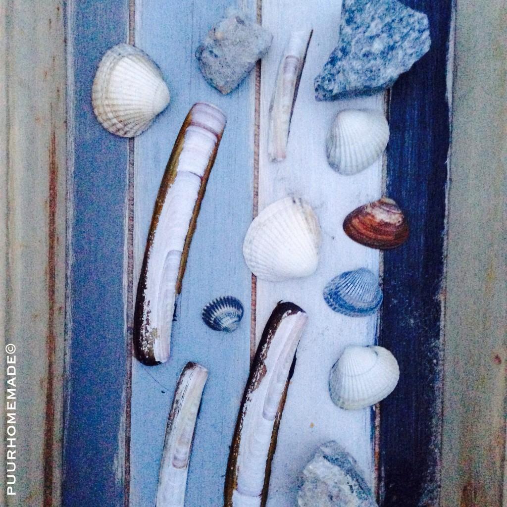 schelpen zoeken - Puur Homemade