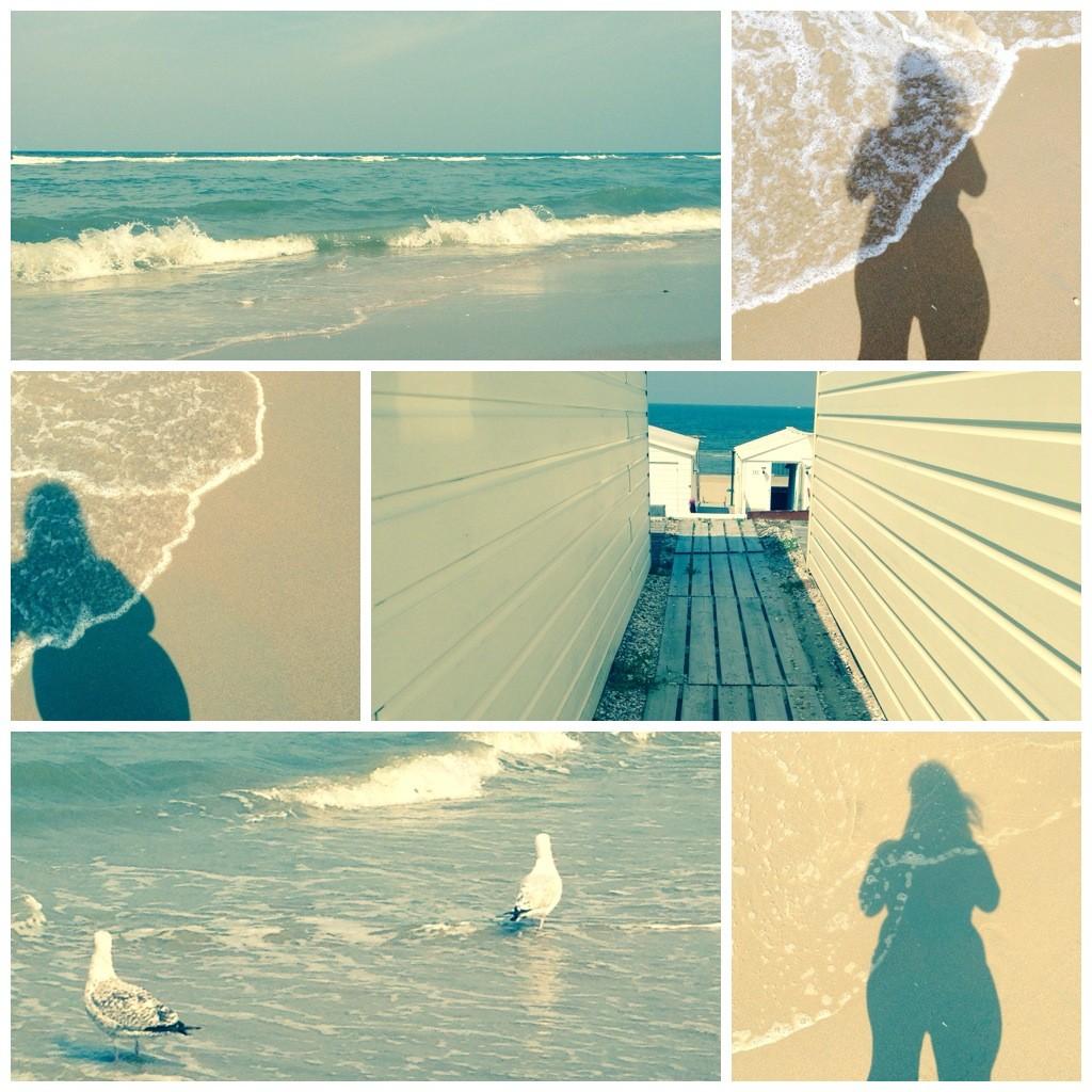 strand 2014_5